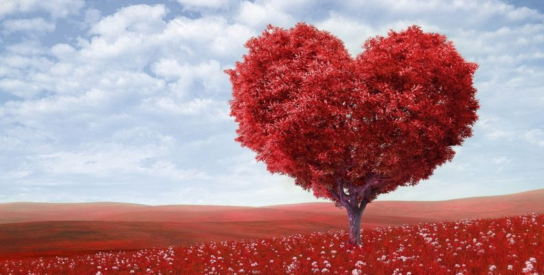 Red heartshaped tree - Fraser Watts